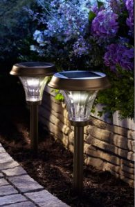 Bright Solar Path Lights that Shine Light up to 4 Feet Out!