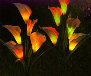 Multi Color Changing Calla Lily Solar Lights