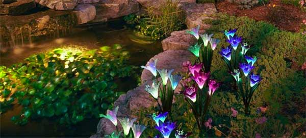 Lily Solar Lights in Landscaping Next to Backyard Pond