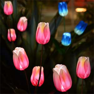 Pink Tulips - Solar Lights on Stakes