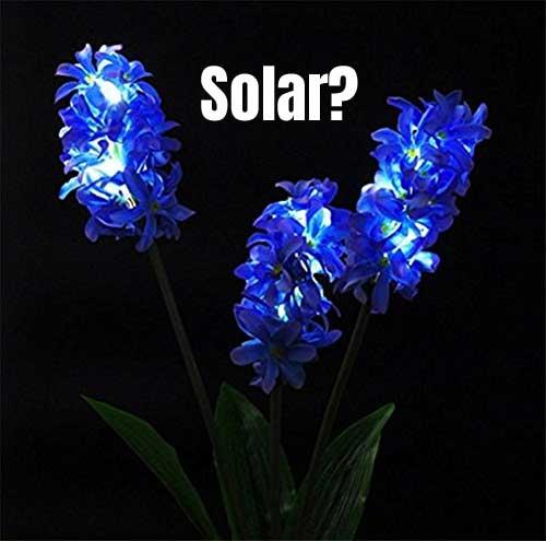 Blue Hyacinth Solar Flower Lights