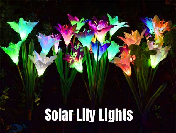 Solar Lily Lights for Illuminating Pathways and Landscape