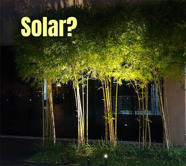 Solar Spot Lights for Trees