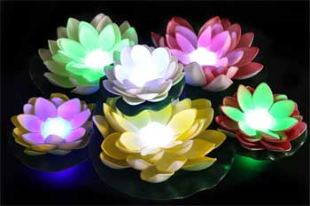 Water Lily Solar Lights that Float on Top of Your Swimming Pool or Backyard Pond and Illuminate at Night